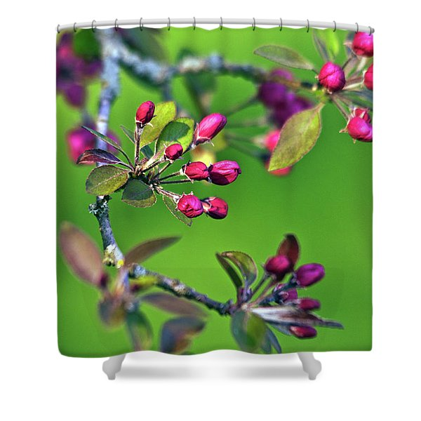 Blooming Spring Poetry Shower Curtain