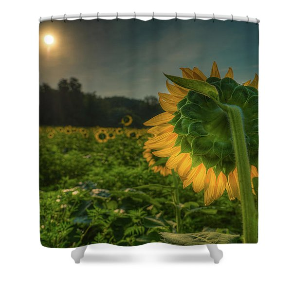 Blooming Sunflower Facing Rising Sun Shower Curtain