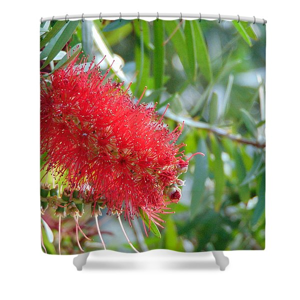 Blooms - Gulf State Park Shower Curtain