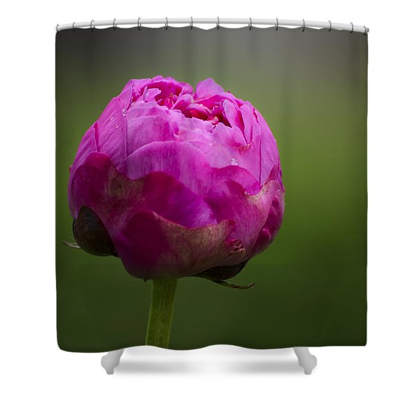 Shower Curtain featuring the photograph Blossom by Andrea Silies