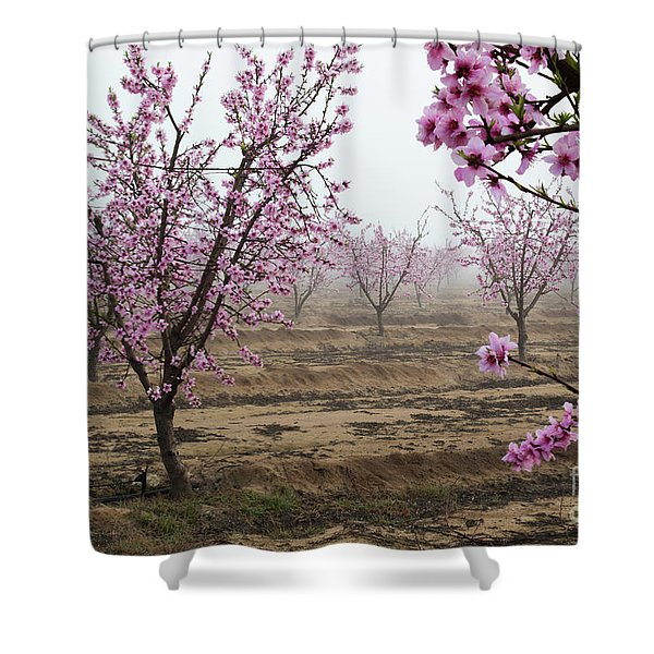 Blossom Trail Shower Curtain
