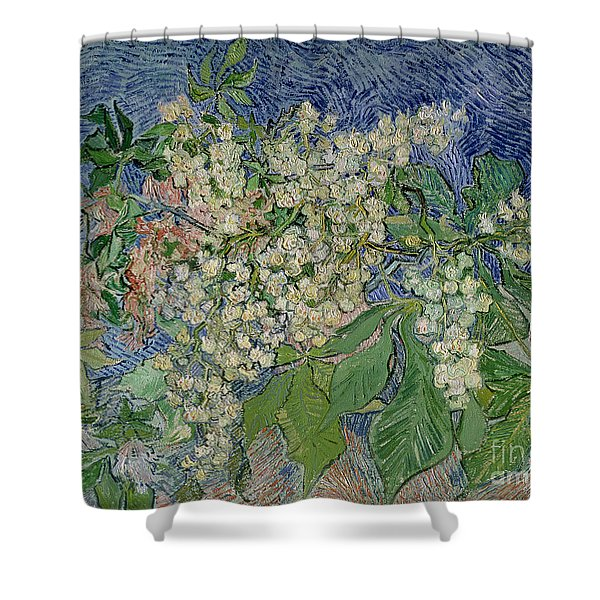 Blossoming Chestnut Branches Shower Curtain