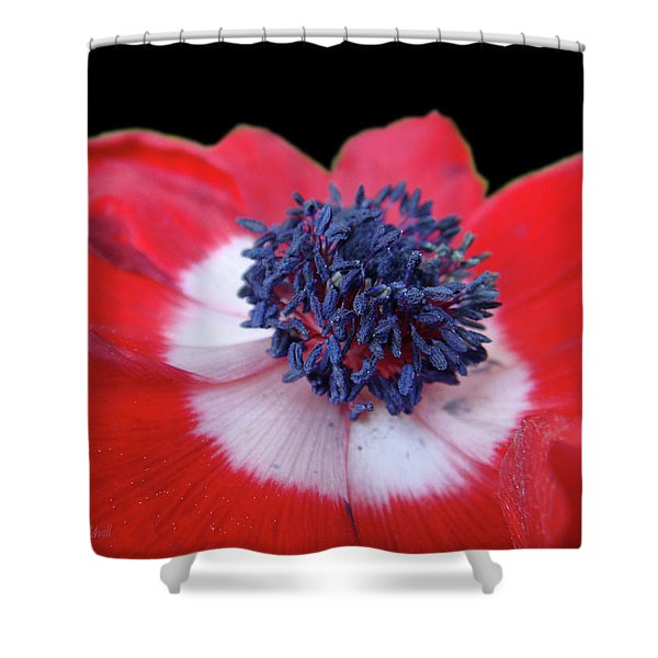 Blossoming Freedom Shower Curtain