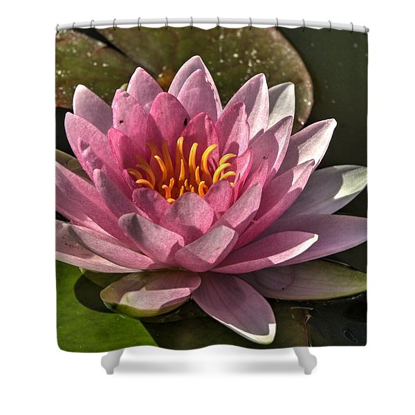 Blossoms And Lily Pads 5 Shower Curtain