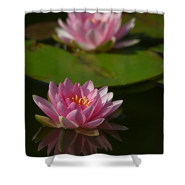 Blossoms And Lily Pads 9 Shower Curtain