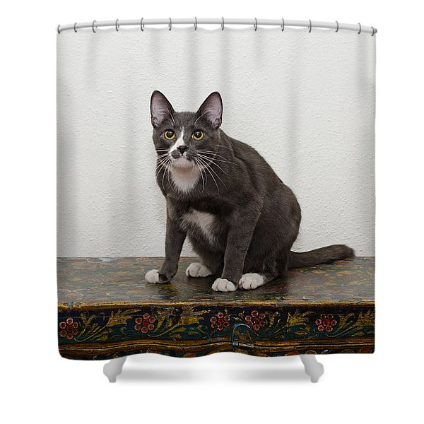 Blue 1 Shower Curtain