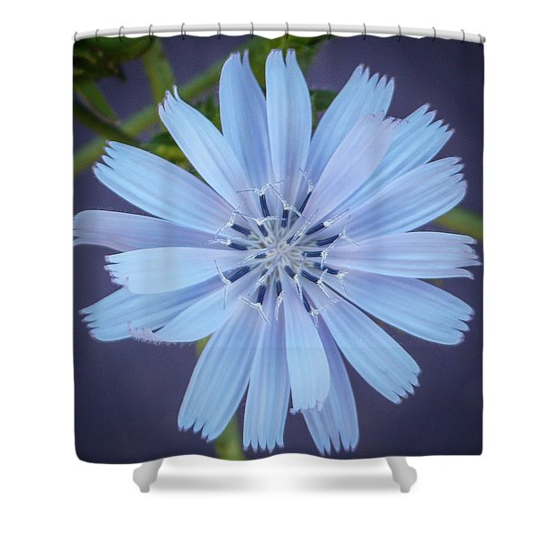 Blue And Beautiful Shower Curtain