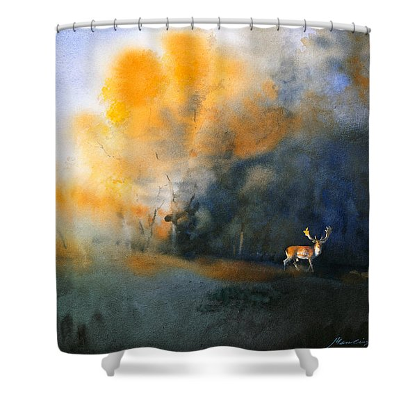 Blue And Orange Shower Curtain