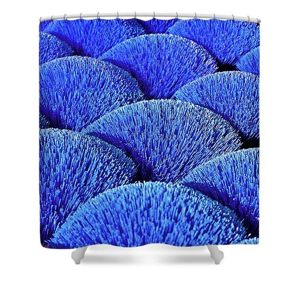 Blue Asia Sound Shower Curtain