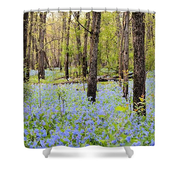 Blue Carpet Shower Curtain