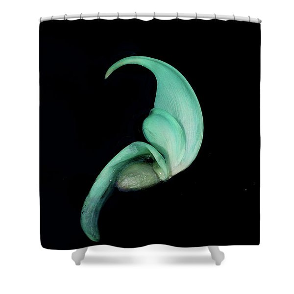 Blue Claw Shower Curtain