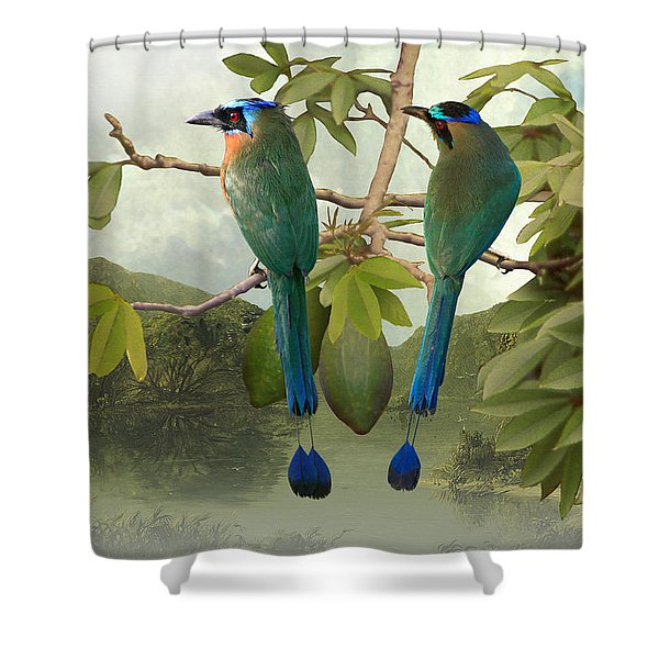 Blue-crowned Motmots In Kapok Tree Shower Curtain