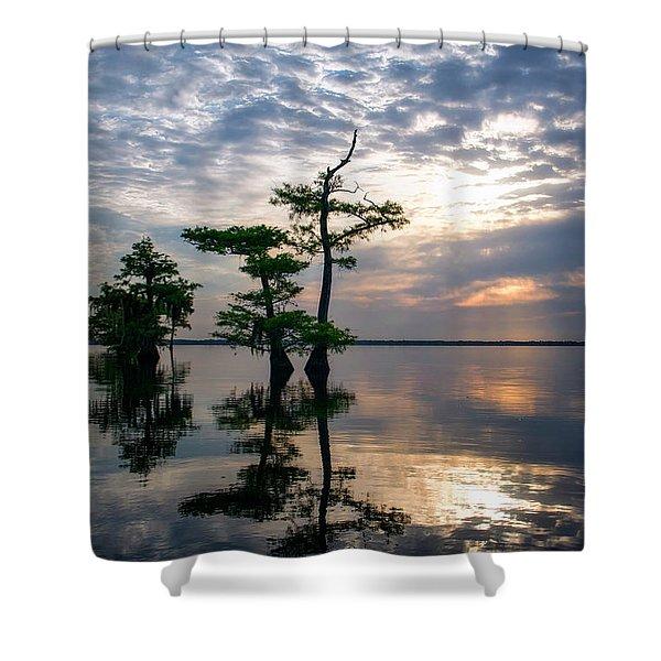 Blue Cypress Sunrise #2 Shower Curtain