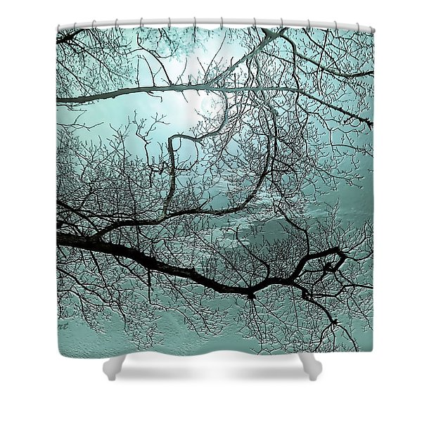 Blue Danube Shower Curtain