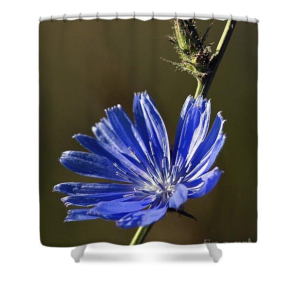 Blue Dream.. Shower Curtain