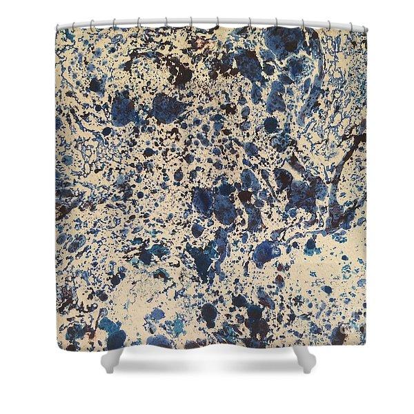 Blue Ecru Shower Curtain