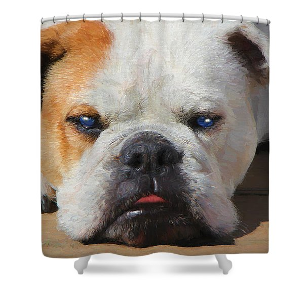 Blue-eyed English Bulldog - Painting Shower Curtain