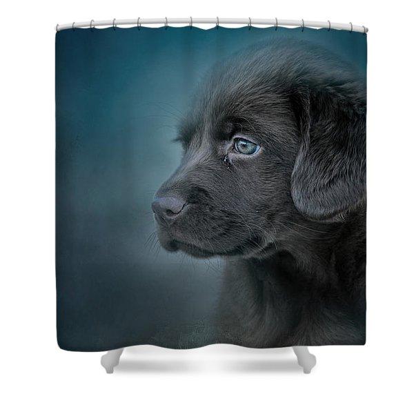 Blue Eyed Puppy Shower Curtain