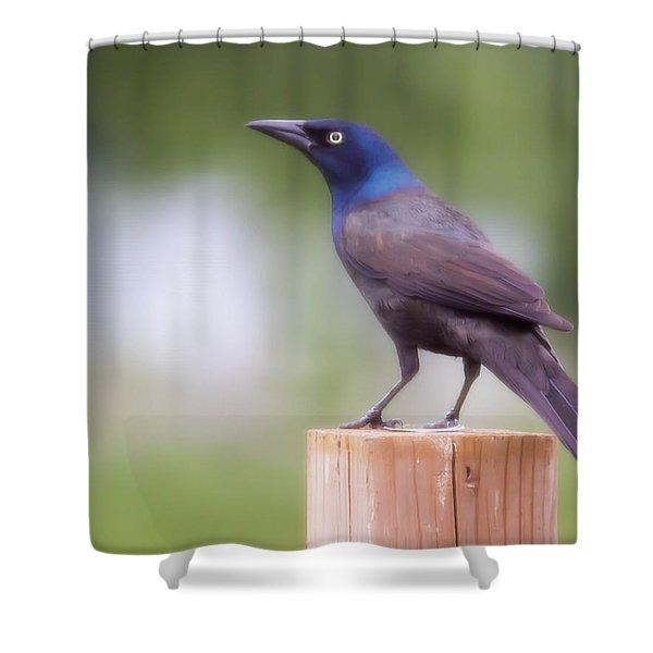 Blue Head Shower Curtain