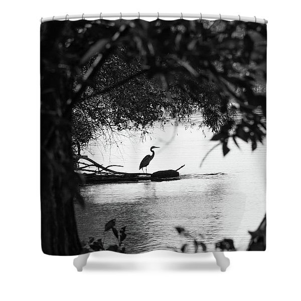 Blue Heron In Black And White. Shower Curtain