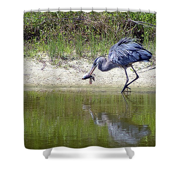 Blue Heron's Lucky Day Shower Curtain