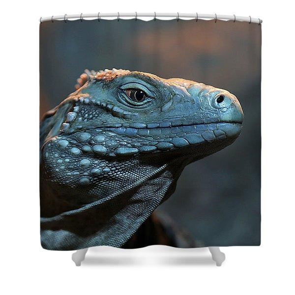 Blue Iguana Shower Curtain