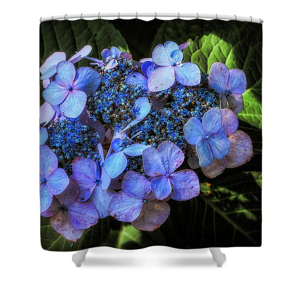 Blue In Nature Shower Curtain