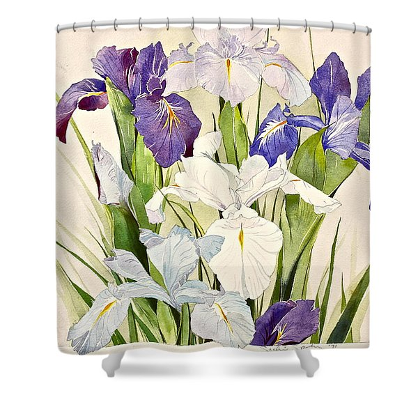 Shower Curtain featuring the painting Blue Irises-posthumously Presented Paintings Of Sachi Spohn  by Cliff Spohn