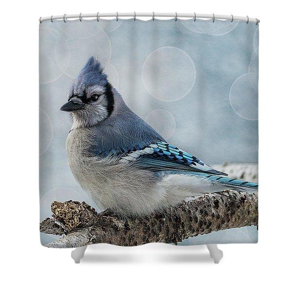 Blue Jay Perch Shower Curtain
