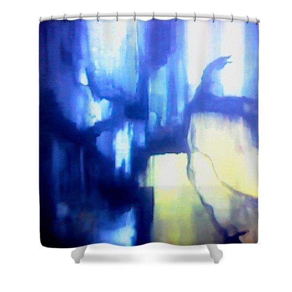 Blue Patterns Shower Curtain