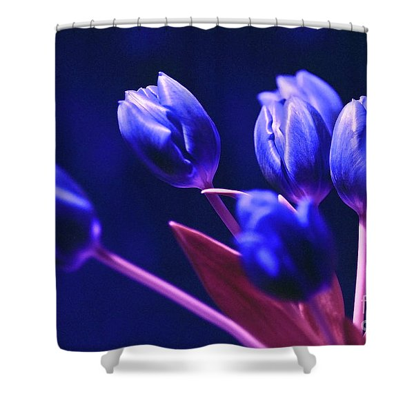 Shower Curtain featuring the photograph Blue Poetry by Silva Wischeropp