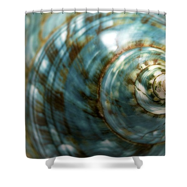 Shower Curtain featuring the photograph Blue Seashell by Fabrizio Troiani