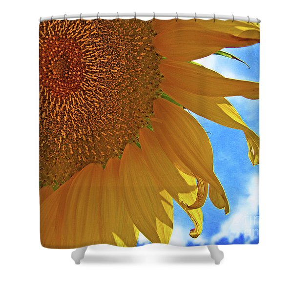 Blue Sky Sunflower Shower Curtain