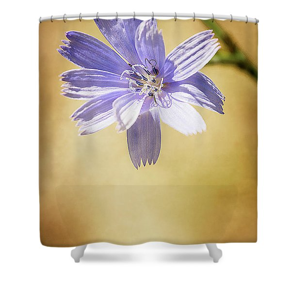 Blue Star #1 Shower Curtain