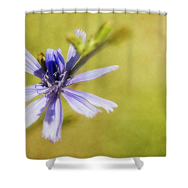 Blue Star #3 Shower Curtain
