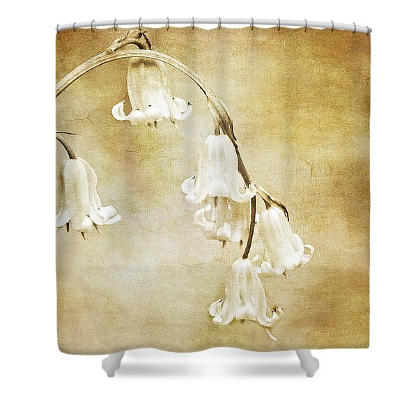 Bluebell Arch Shower Curtain