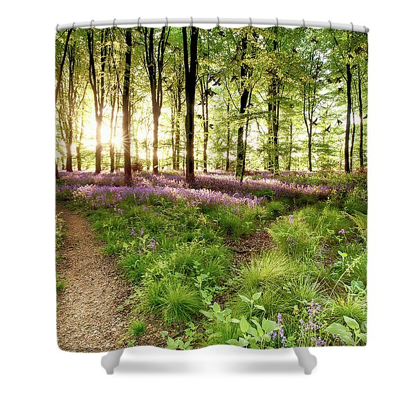 Bluebell Woods With Birds Flocking  Shower Curtain