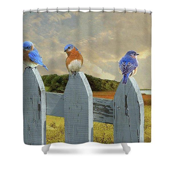 Bluebirds In My Heart Shower Curtain