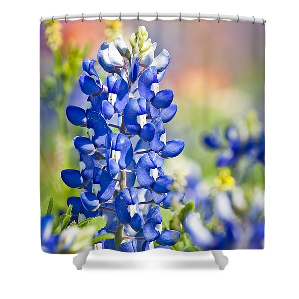 Bluebonnet 1 Shower Curtain