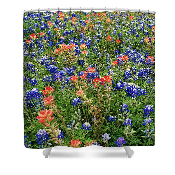 Bluebonnets And Paintbrushes 3 - Texas Shower Curtain