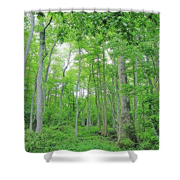 Blueboonet Swamp Baton Rouge La Shower Curtain