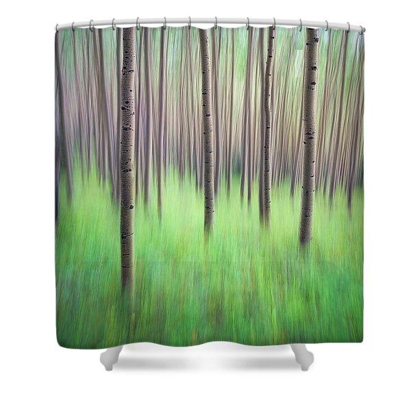Blurred Aspen Trees Shower Curtain