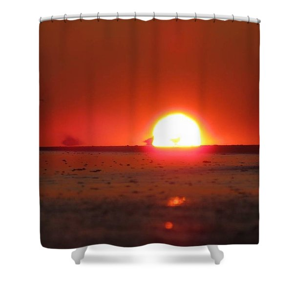 Blurred Lines Shower Curtain