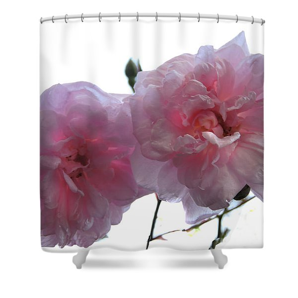 Blushing Beauties Shower Curtain