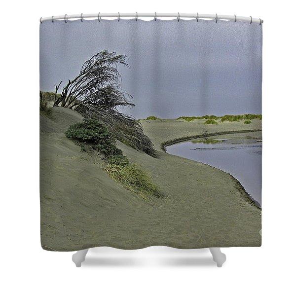 Bodega Dunes Shower Curtain