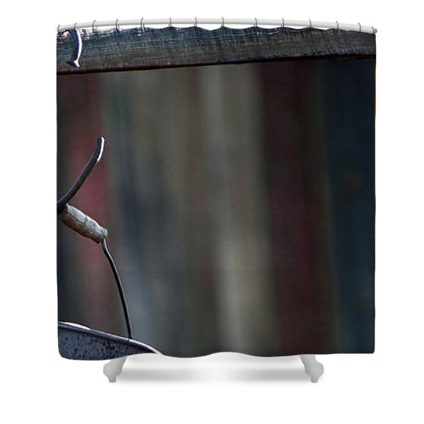 Shower Curtain featuring the photograph Bodie 42 by Catherine Sobredo