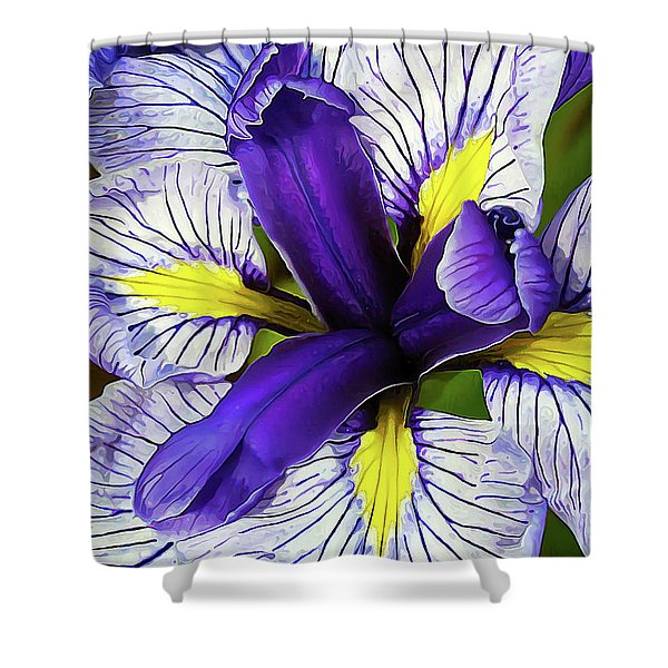 Boothbay Beauty Shower Curtain