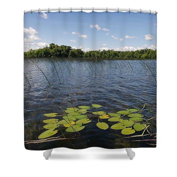 Borden Lake Scene Shower Curtain