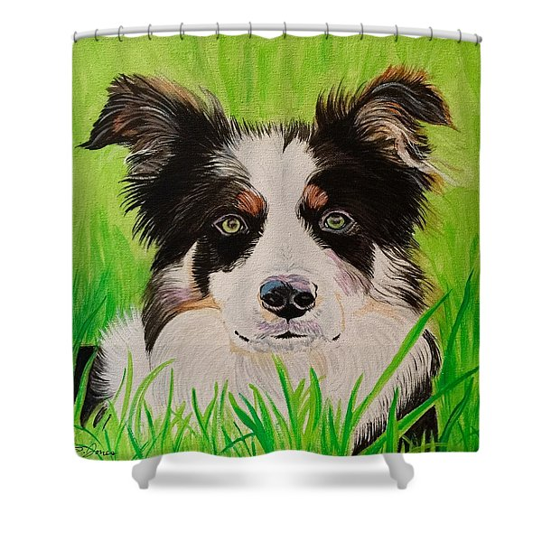 Bordering On Paradise Shower Curtain