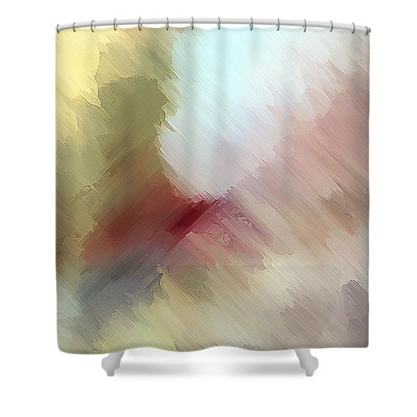 Born In Bethlehem Shower Curtain